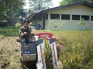 Teknologi Pertanian M Ashof Sulaiman